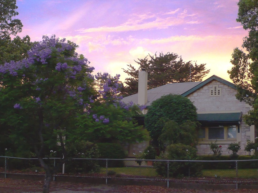 Angaston Rose BB - Accommodation Brunswick Heads