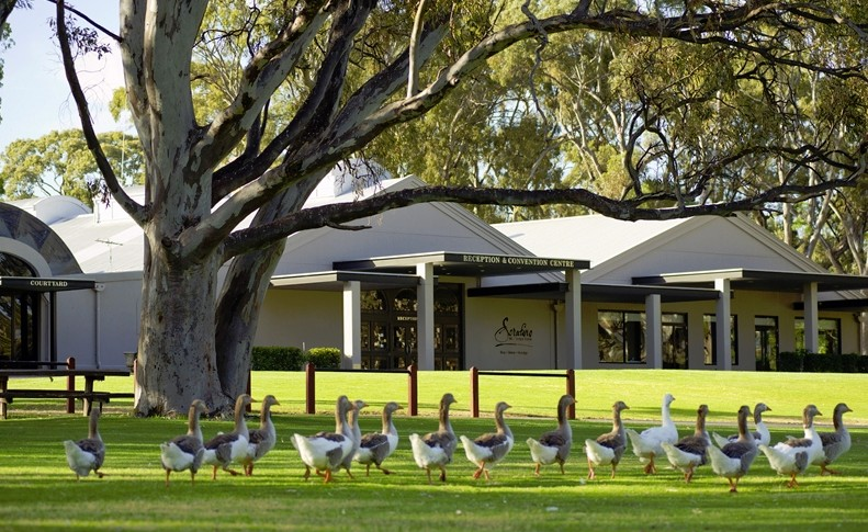 Serafino McLaren Vale - Accommodation Brunswick Heads
