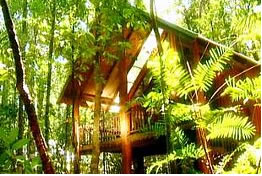 The Canopy Treehouses - Accommodation Brunswick Heads