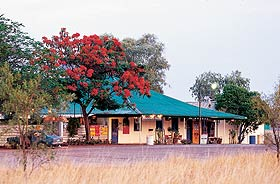 Wauchope Hotel and Roadhouse - Accommodation Brunswick Heads