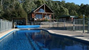 Karoonda Olive Grove Retreat at Mt Buffalo Olives - Accommodation Brunswick Heads