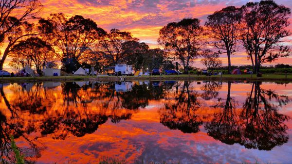 Coonawarra Bush Holiday Park - Accommodation Brunswick Heads