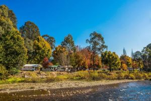 Porepunkah Bridge Holiday Park - Accommodation Brunswick Heads
