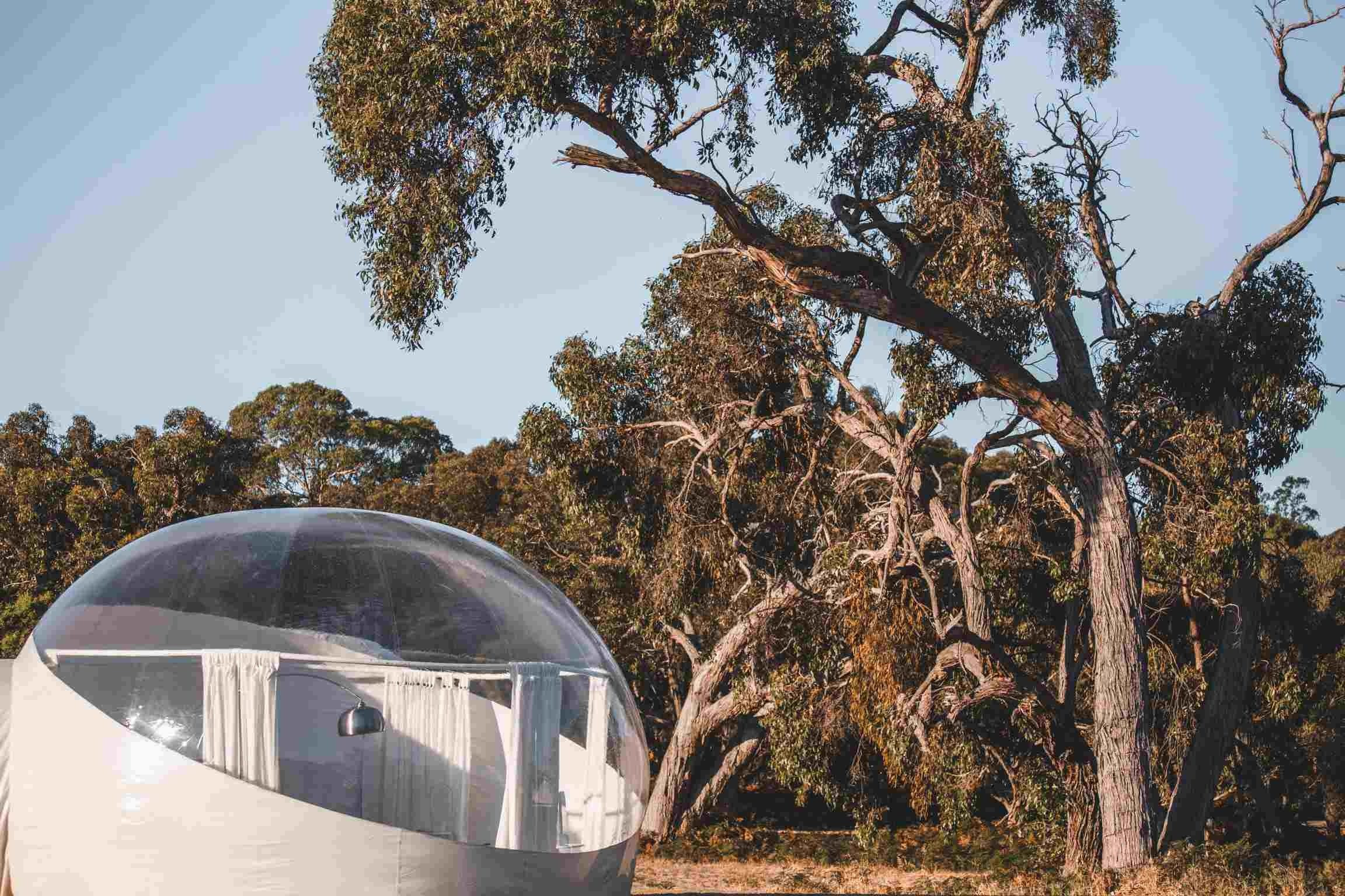 Coonawarra Bubble Tents - Accommodation Brunswick Heads