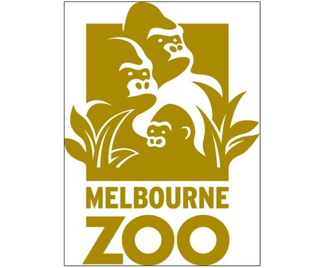 Melbourne Zoo - Accommodation Brunswick Heads