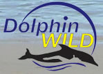 Dolphin Wild - Accommodation Brunswick Heads