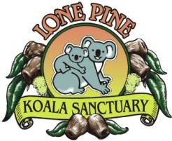 Lone Pine Koala Sanctuary - Accommodation Brunswick Heads
