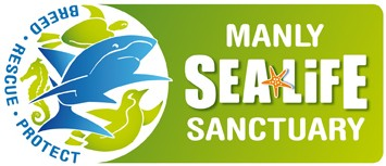 Manly SEA LIFE Sanctuary - Accommodation Brunswick Heads