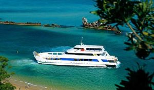 Queensland Day Tours - Accommodation Brunswick Heads