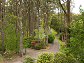 Mount Lofty Botanic Garden - Accommodation Brunswick Heads