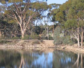 Merredin Railway Dam - Accommodation Brunswick Heads