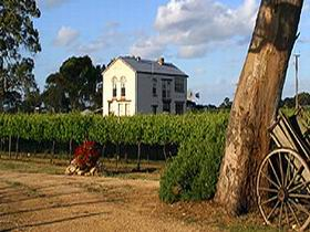 Highbank Vineyards - Accommodation Brunswick Heads