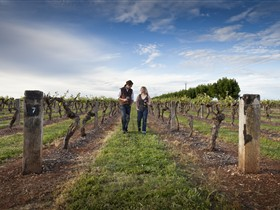 Coonawarra Wineries Walking Trail - Accommodation Brunswick Heads