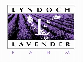 Lyndoch Lavender Farm and Cafe - Accommodation Brunswick Heads
