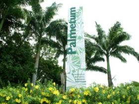 Townsville Palmetum - Accommodation Brunswick Heads