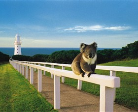 Cape Otway Lightstation - Accommodation Brunswick Heads