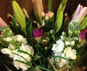 Alpine Blooms Florist Mansfield - Accommodation Brunswick Heads