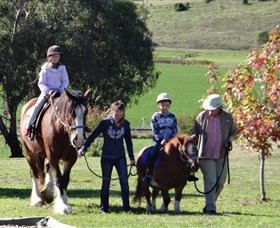Bathurst Farm Experience - Accommodation Brunswick Heads