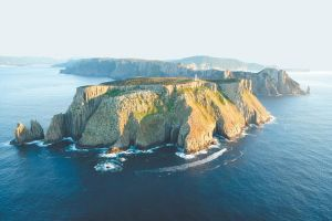 3-Hour Tasman Peninsula Wilderness Cruise from Port Arthur - Accommodation Brunswick Heads