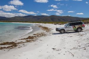 4X4 and Lunch Half Day Bicheno Coastal Mountain - Accommodation Brunswick Heads