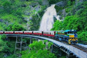 Full-Day Tour with Kuranda Scenic Railway Skyrail Rainforest Cableway and Hartley's Crocodile Adventures from Cairns - Accommodation Brunswick Heads