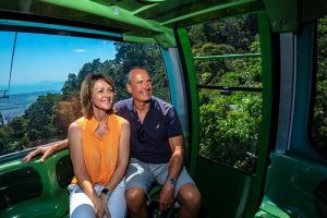Skyrail Rainforest Cableway Day Trip from Palm Cove - Accommodation Brunswick Heads