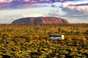 Coach Transfer from Kings Canyon Resort to Ayers Rock Resort - Accommodation Brunswick Heads