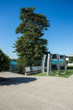 A Cup of Culture in Mackay - Accommodation Brunswick Heads