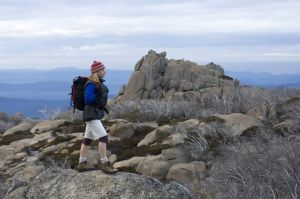 Mount Buffalo National Park - Accommodation Brunswick Heads
