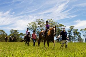 Port Macquarie Horse Riding Centre - Accommodation Brunswick Heads