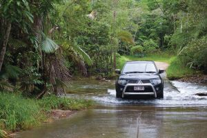 The Pioneer Valley and Eungella National Park - Accommodation Brunswick Heads