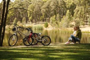 Creswick Regional Park - Accommodation Brunswick Heads