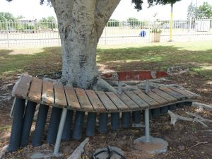Barcaldine Musical Instruments - Accommodation Brunswick Heads