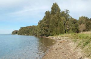 Lake Macquarie State Conservation Area - Accommodation Brunswick Heads